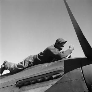 Tuskegee Airman, 1945 by Toni Frissell