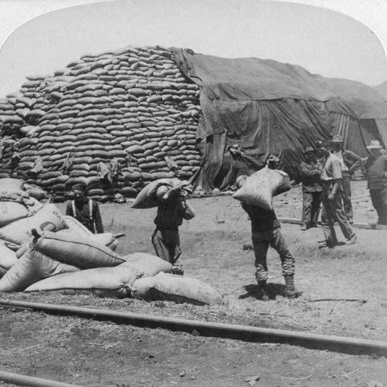 Tons Upon Tons of Oats for Tommy's Faithful Friend, De Aar, South Africa, Boer War, 1900-Underwood & Underwood-Giclee Print