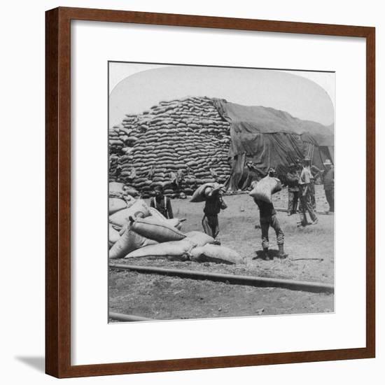 Tons Upon Tons of Oats for Tommy's Faithful Friend, De Aar, South Africa, Boer War, 1900-Underwood & Underwood-Framed Giclee Print