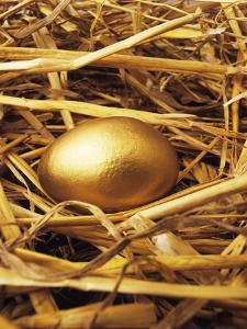 Golden Egg by Tony Craddock