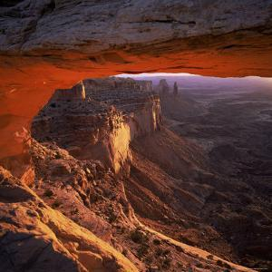 Mesa Arch, Canyonlands National Park, Utah, United States of America (U.S.A.), North America by Tony Gervis