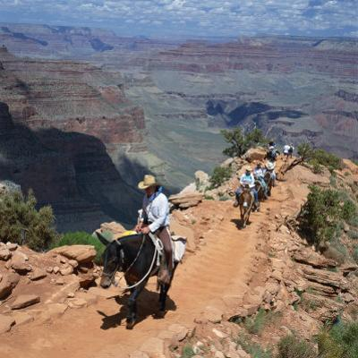 Tourists on Horseback Returning from Trekking in the Grand Canyon, Arizona, USA