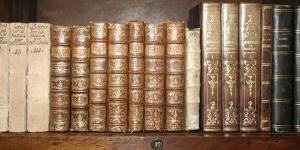 Biblioteca II by Tony Koukos