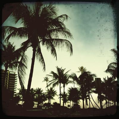 Miami Vintage I