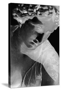 X-ray - Louvre I by Tony Koukos