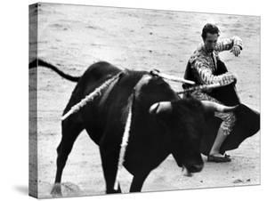 Matador Julian Marin and Bull in the Ring During a Bullfight Celebrating the Fiesta de San Ferman by Tony Linck