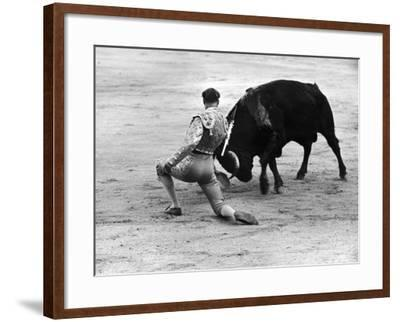 Matador Julian Marin and Bull in the Ring for a Bullfight During the Fiesta de San Ferman