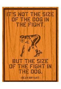 The Fight by Tony Pazan