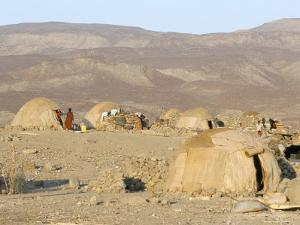 Desert Camp of Afar Nomads, Afar Triangle, Djibouti, Africa by Tony Waltham