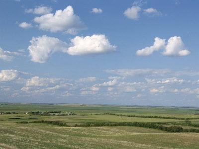 Prairie Farmland, North Dakota, USA