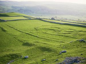 Remnants of Celtic Settlement on Limestone Bench, Hill Castles, Wharfedale, Yorkshire by Tony Waltham