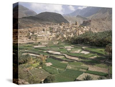 Traditional Jabali Village with Palmery in Basin in Jabal Akhdar, Bilad Sayt, Oman, Middle East