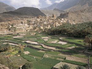 Traditional Jabali Village with Palmery in Basin in Jabal Akhdar, Bilad Sayt, Oman, Middle East by Tony Waltham