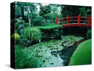 Bridge and Pond of Japanese Style Garden, Kildare, Ireland by Tony Wheeler