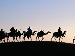 Desert Just Outside Timbuktu, Tuareg Camels at Sunset by Tony Wheeler