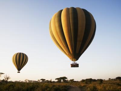 Hot Air Balloons at Dawn