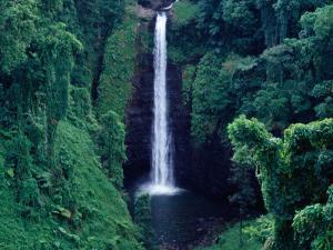 Sopo'Aga Falls Dropping 50M into Gorge, Upolu, Samoa, Upolu by Tony Wheeler