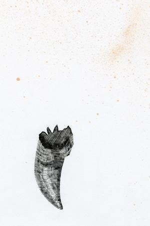 https://imgc.artprintimages.com/img/print/tooth-fay-erie-dust-2014_u-l-psfe260.jpg?p=0