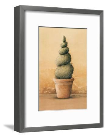 Topiaire III-Laurence David-Framed Art Print