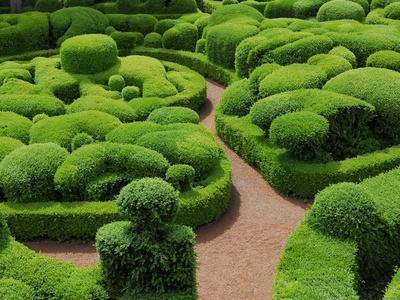 https://imgc.artprintimages.com/img/print/topiary-garden-at-chateau-de-marqueyssac_u-l-pzl0s60.jpg?p=0