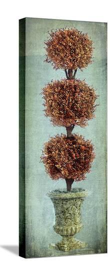 Topiary I-Karen J^ Williams-Stretched Canvas Print