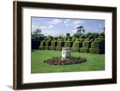 Topiary in the Form of Chess Pieces, from Anne Boleyn's Garden--Framed Photographic Print