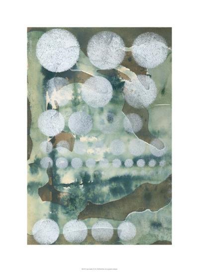 Topo-Graphic I-Jennifer Goldberger-Limited Edition