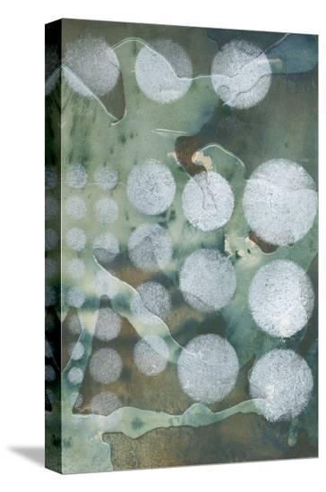 Topo-Graphic II-Jennifer Goldberger-Stretched Canvas Print