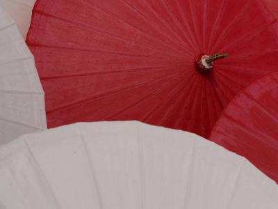 Tops of Opened Red and White Parasols, Thailand--Photographic Print