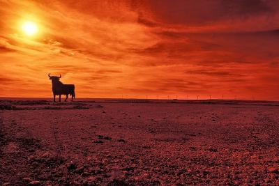 Toro De Osborne, an Unofficial National Symbol of Spain, First Created in 1956 by Manolo Prieto-Kike Calvo-Photographic Print