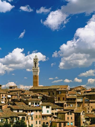 Torre De Mangia and Siena Skyline-Design Pics Inc-Photographic Print