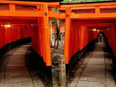 Torri Gates Lining Mountain Pathways at Fushimi-Inari, Kyoto, Japan-Frank Carter-Photographic Print