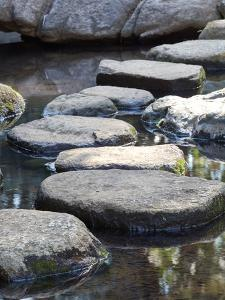 Zen Stone Path by Torsakarin
