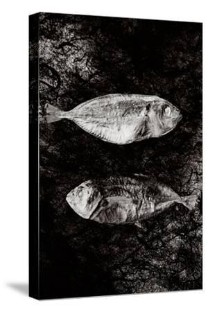 Two Dry Fishlying on a Piece of Elephant Paper