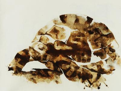 Tortoise Shell-Sydney Edmunds-Giclee Print
