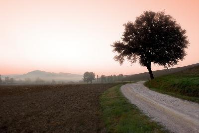 Toscana Valle No.1-Alan Blaustein-Photographic Print