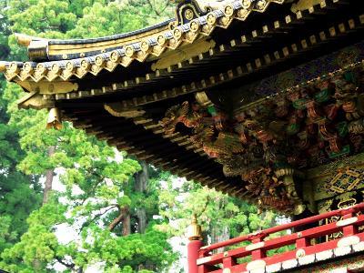Tosho-Gu Shrine--Photographic Print
