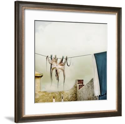 Tote Hose--Framed Giclee Print