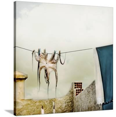 Tote Hose--Stretched Canvas Print