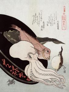 Kanagawa by Totoya Hokkei