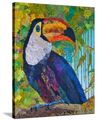 Toucan #2--Stretched Canvas Print
