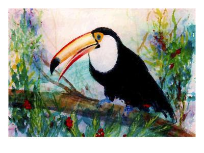 Toucan Sits on Large Branch-Rich LaPenna-Giclee Print