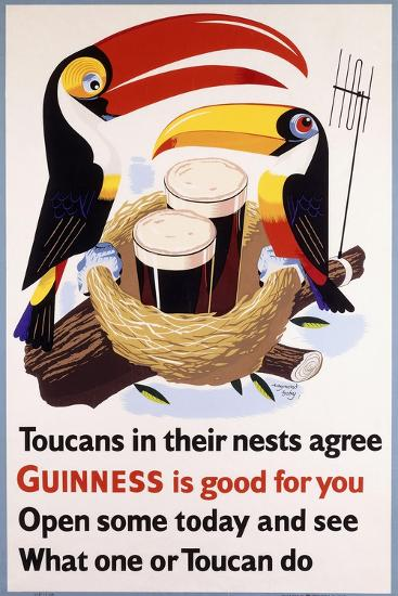 Toucans in their Nests Agree Guinness Is Good for You, 1957 (Lithograph in Colours)--Giclee Print