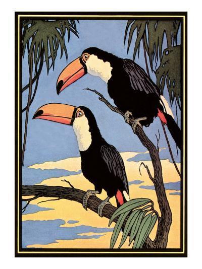 Toucans--Art Print