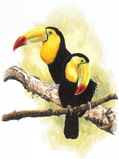 Toucans-Barbara Keith-Giclee Print