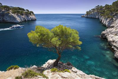 Tour Boat, Lone Pine Tree in the Calanques Near Cassis, Provence, France-Brian Jannsen-Photographic Print