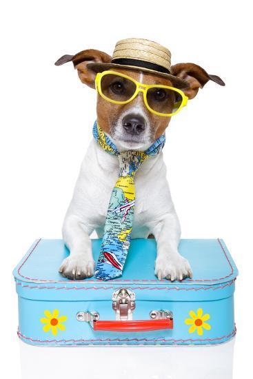 Tourist Dog With A Hat , Sunglasses And A Bag-Javier Brosch-Photographic Print