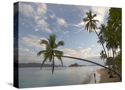 Tourist walking along beach, Tortuga Island, Costa Rica-Tim Fitzharris-Stretched Canvas Print