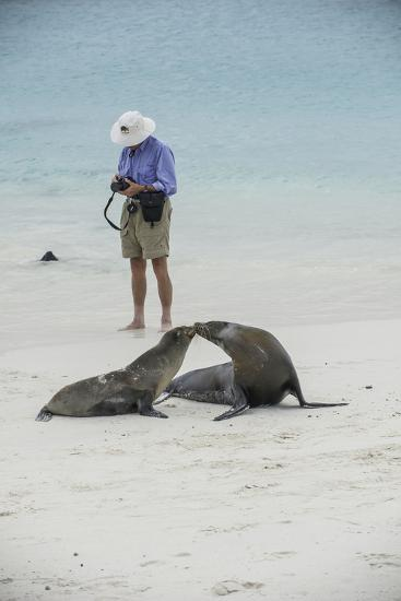 Tourists and Curious Galapagos Sea Lions Mingle on the Beach-Jad Davenport-Photographic Print