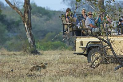 Tourists Encounter a Leopard in South Africa's Sabi Sand Game Reserve-Steve Winter-Photographic Print
